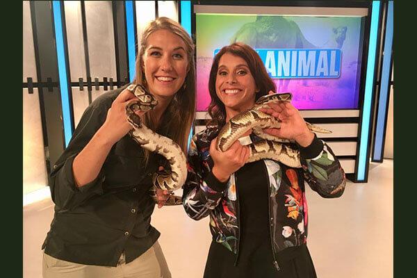 100 % Animal - Télé Québec
