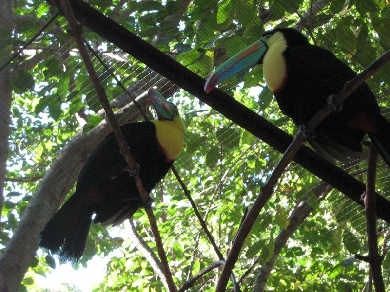 Costa Rica, province du Guanacaste