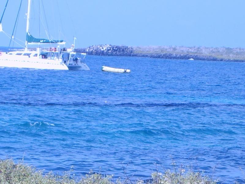 Arrivée sur l'île Baltra